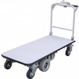 Motorized carts